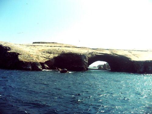 Islas Ballestas, Paracas Tours