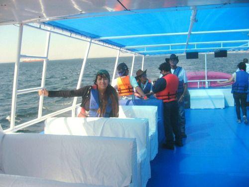 Tours en Paracas