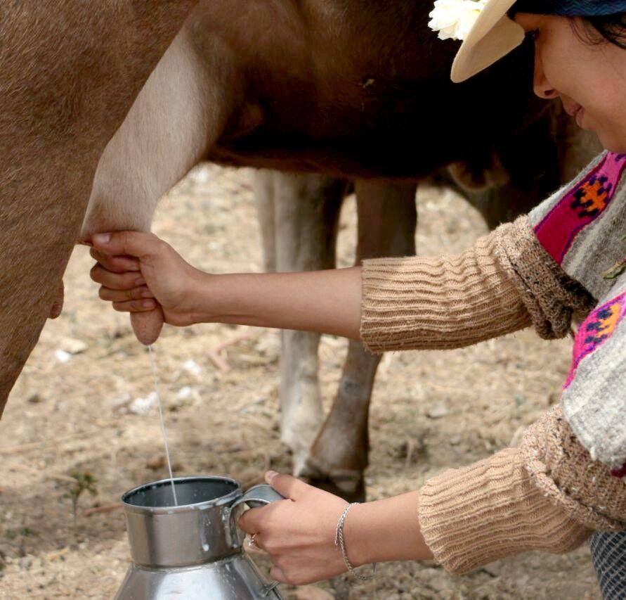 Turismo vivencial en Huaros