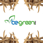 The Truth About Deer Antlers