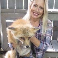 Busch Wildlife with Jane the fox