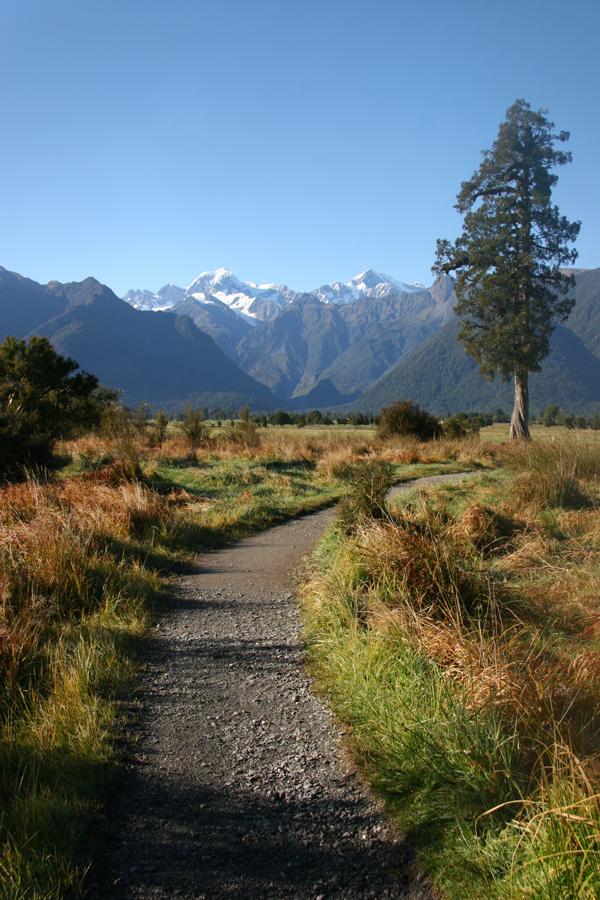 New Zealand Autumn