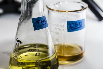 Purified Cannabinoid Extracts