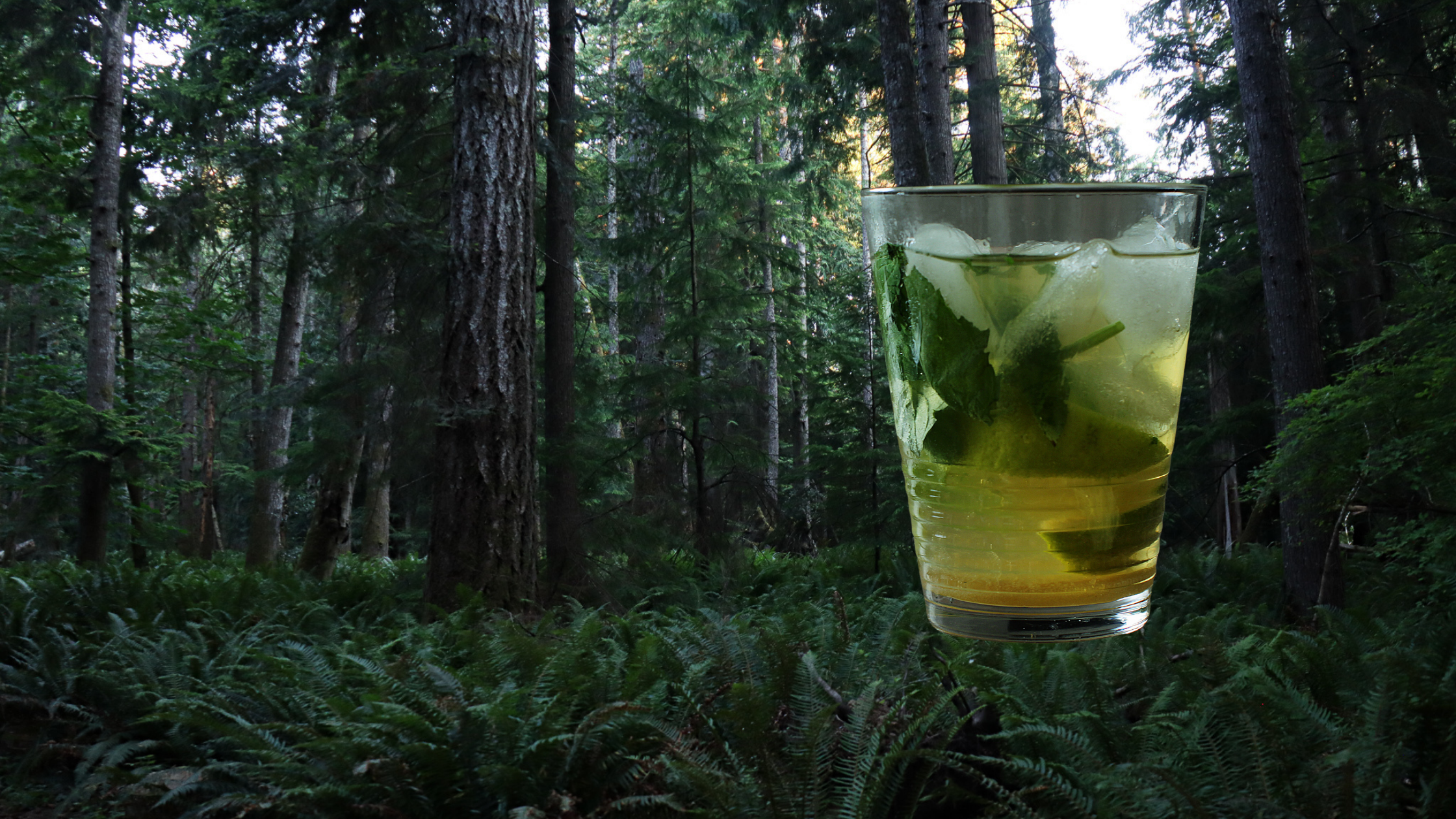 Beat the heat with a refreshing cannabis-infused drink!