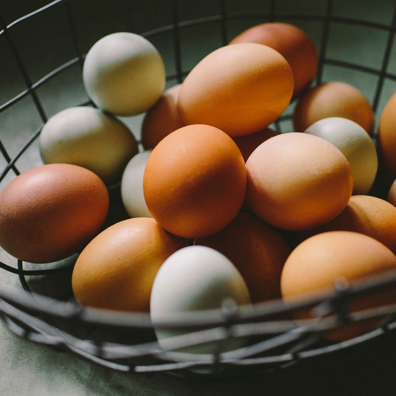 Eggs & Poultry
