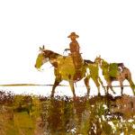 Pony Up | 16 x 16 in | Available - Sorrel Sky Gallery, Santa Fe NM
