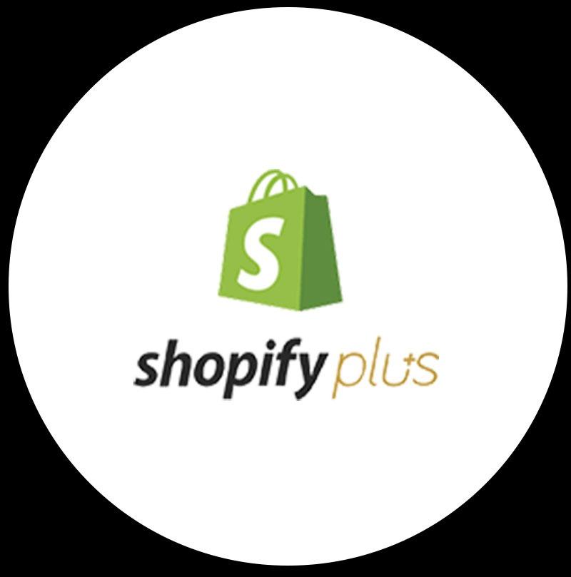 Shopify Web Developers