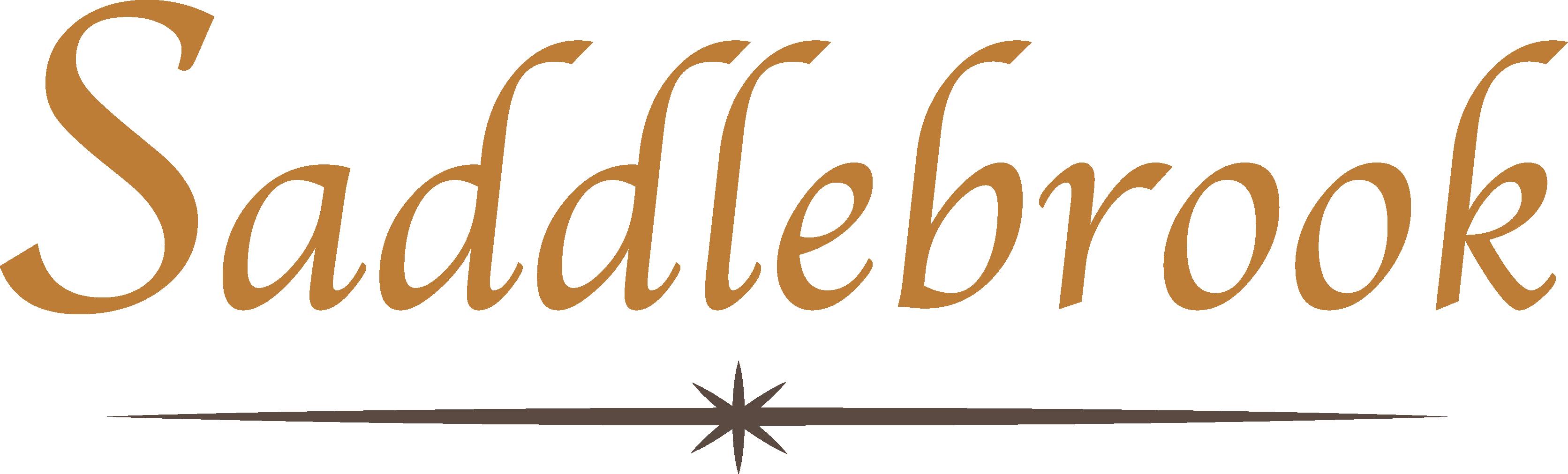 Saddlebrook_Logo 2018_Iver
