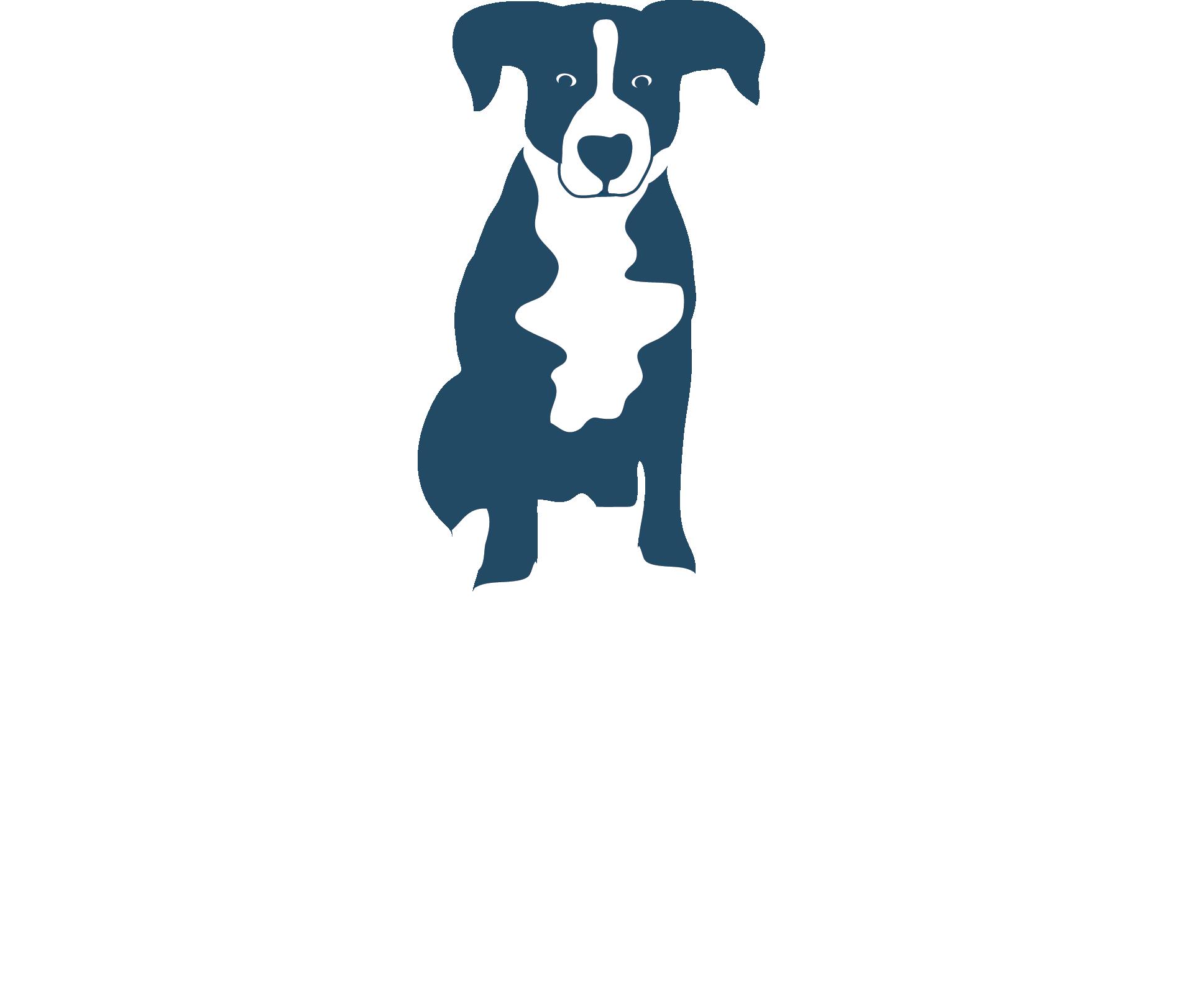 Blue Dog Tavern_Logo