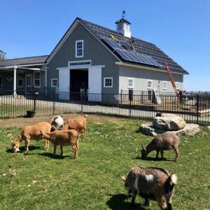 solar farm Maine