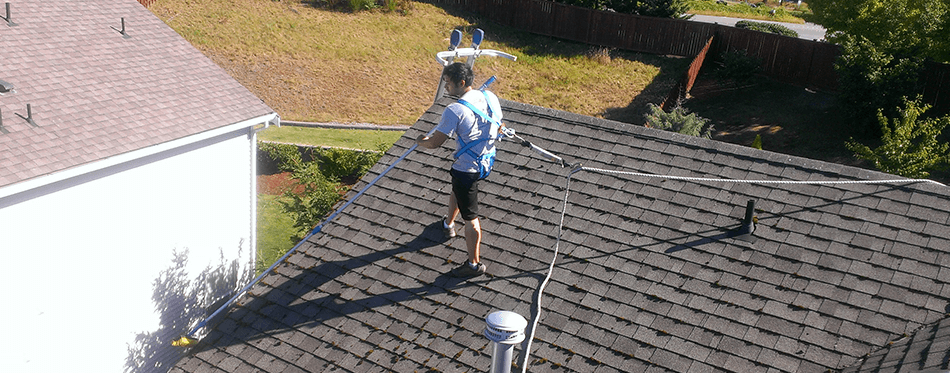 Salmon Bay Window Cleaning