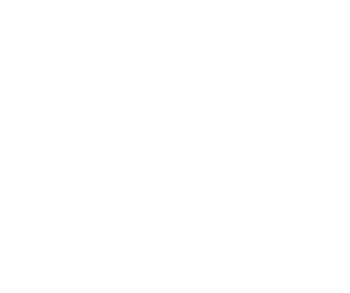 The Madison Firm