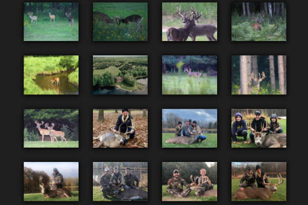 Trophy Whitetail Deer Pictures