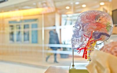 Scientific Research on the Effectiveness of Neurofeedback