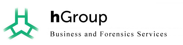 hGroup, LLC - Accounting, Finance & Business Consulting in Dallas, TX