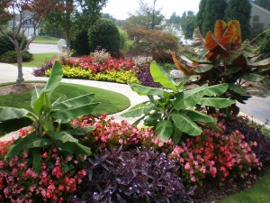 marietta landscape maintenance company