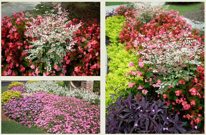 Unique Environmental Landscapes Seasonal Color Blend