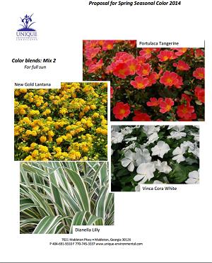 SpringBlend2-Best-Atlanta-Landscaper