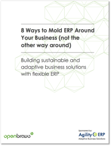 8 ways to mold your erp around your business