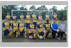 This is a picture of a youth soccer team in yellow uniforms with blue sleeves. There are two rows of players, one is kneeling, the others are standing.