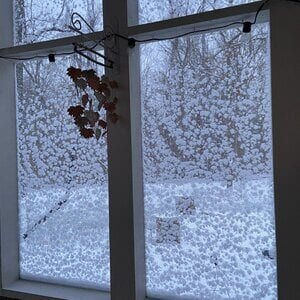 A Frosted Window Overlooking a Snow-Covered Plain