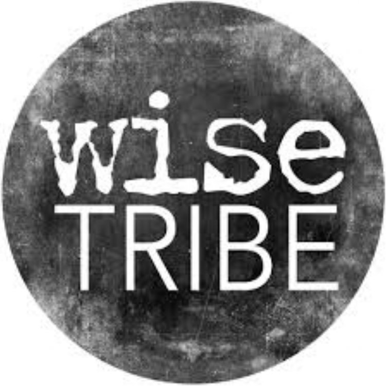 Wisetribe+logo