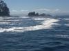 Fishing Charter in Port Renfrew