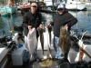 Fishing Charter in Victoria, BC