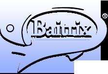 Baitrix