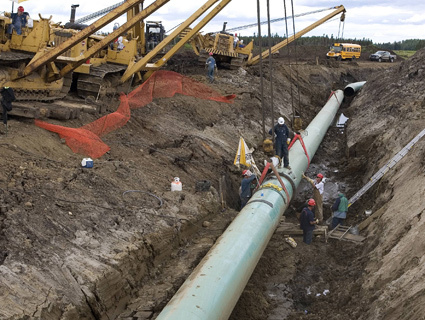 Keystone Pipeline Canceled, Workers Speak Out