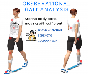 Walking Movement Analysis