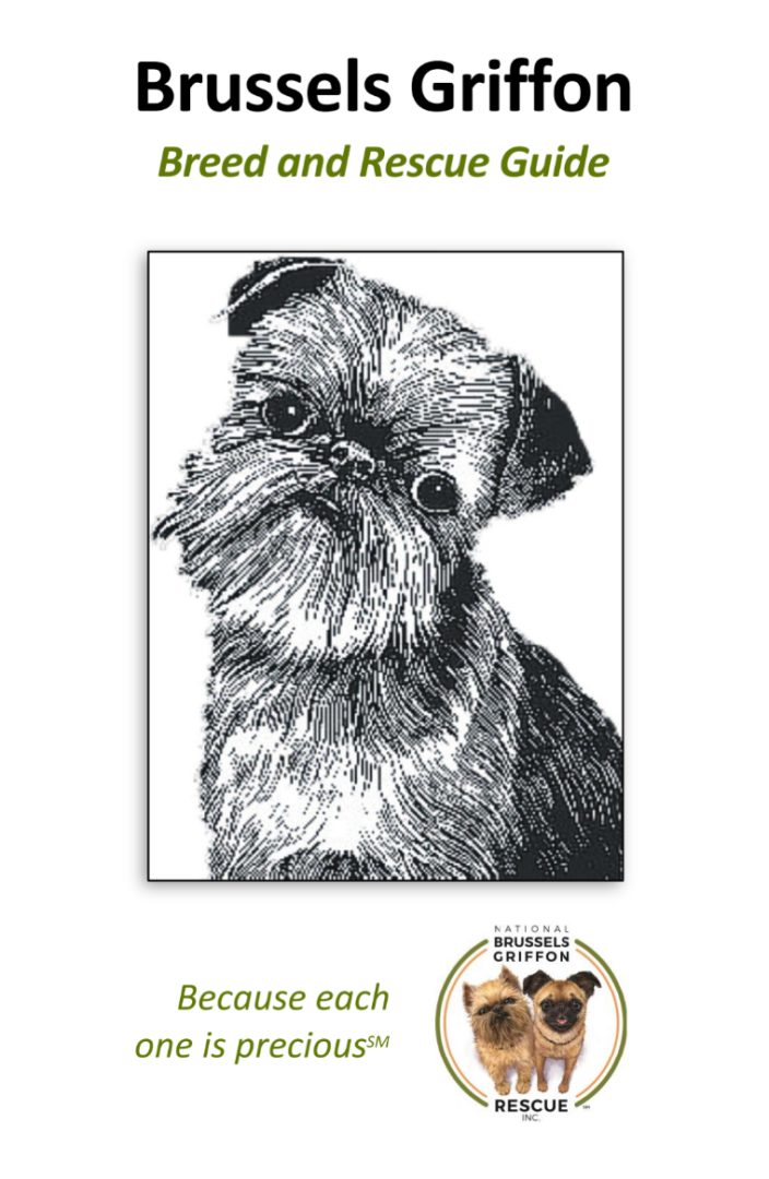 Breed and Rescue Guide Cover