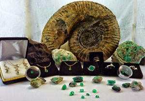 emeralds and fossils to benefit Amazon Pueblo