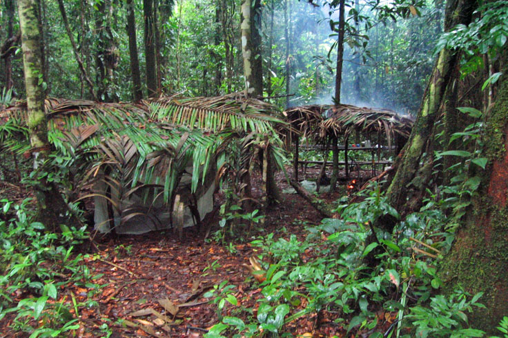 our home in the jungle for two days