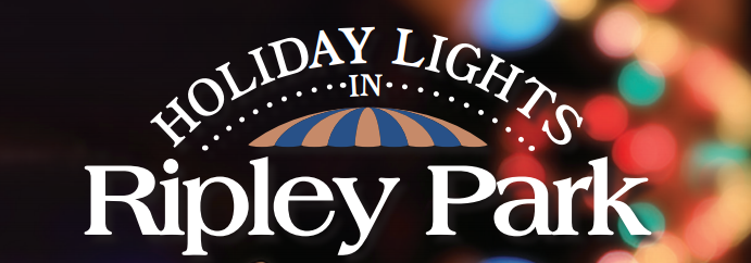 holiday lights in ripley park