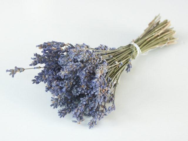 lavender-bouquet-1506083-1279x959