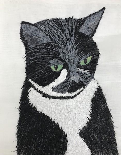 gray stitching on fluffy kitty