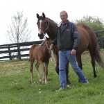 Mare and colt at Claybank Farm