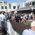 Derby Day paddock
