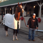 Now I am ready to pose for fans with Assistant trainer Alan Sherman