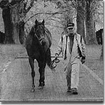 derby_horse
