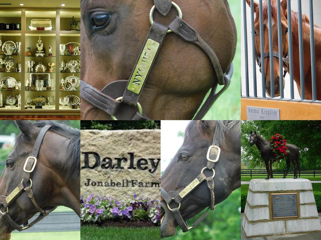 D 3 B day 3 darley