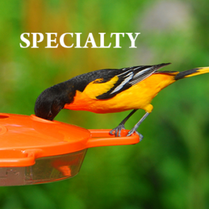 Specialty Feeders