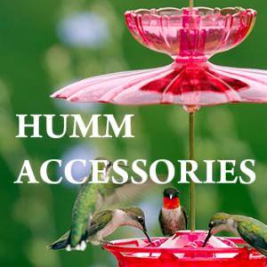 Hummingbird Feeder Accessories
