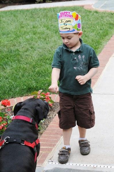 Birthday-boy-with-service-dog