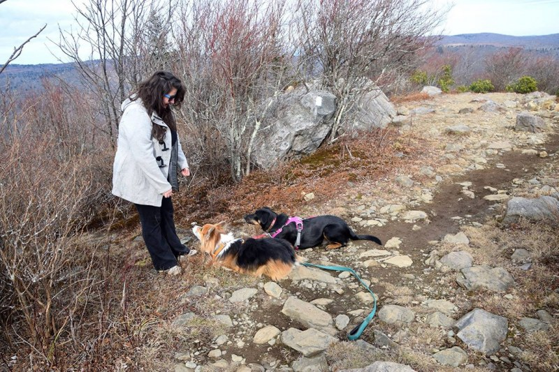 Chrissy-hiking-with-dog-in-SWVA