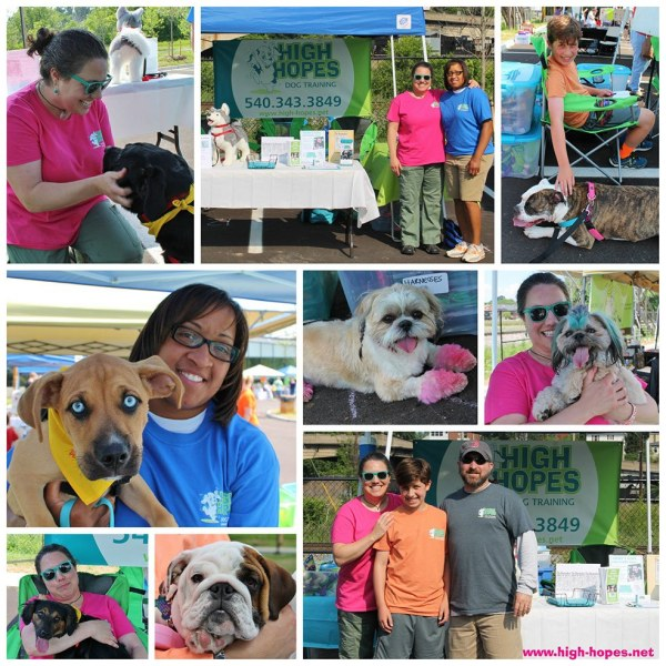 Woofstock-festival-Collage-2015