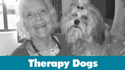 Permalink to:Therapy Dogs