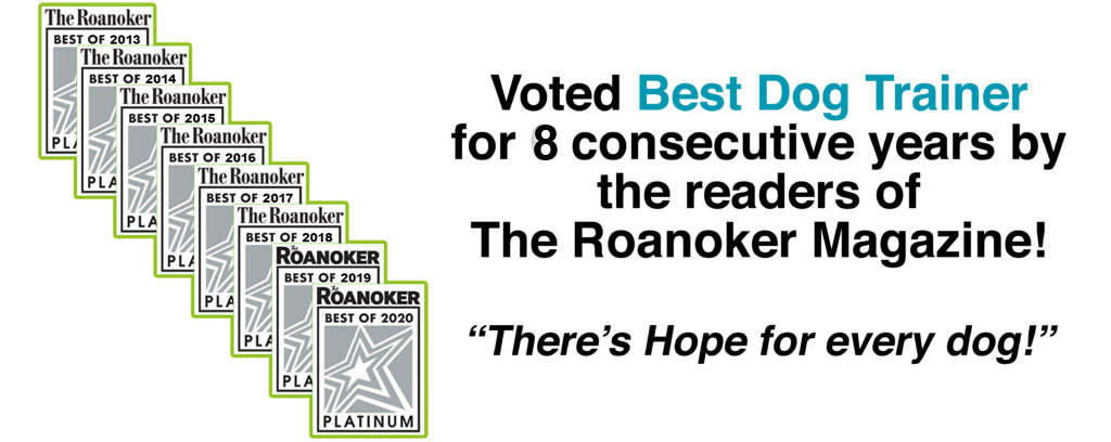Voted Best Dog Trainer in Roanoke Virginia - 8 awards in local magazine