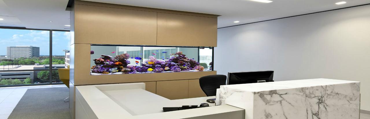 Office Aquarium 2